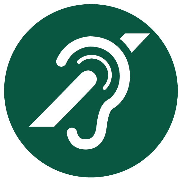 Hearing impairment icon